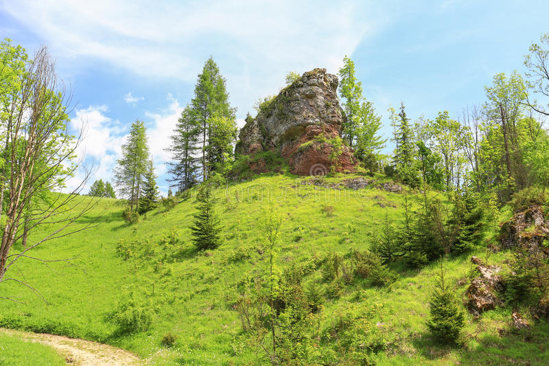 Pieniny山储备的风景看法在波兰 库存图片