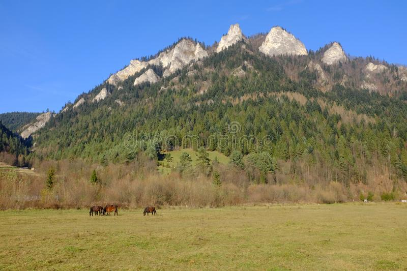 Pieniny mountains, sewn called three crowns. / landscape royalty free stock photo