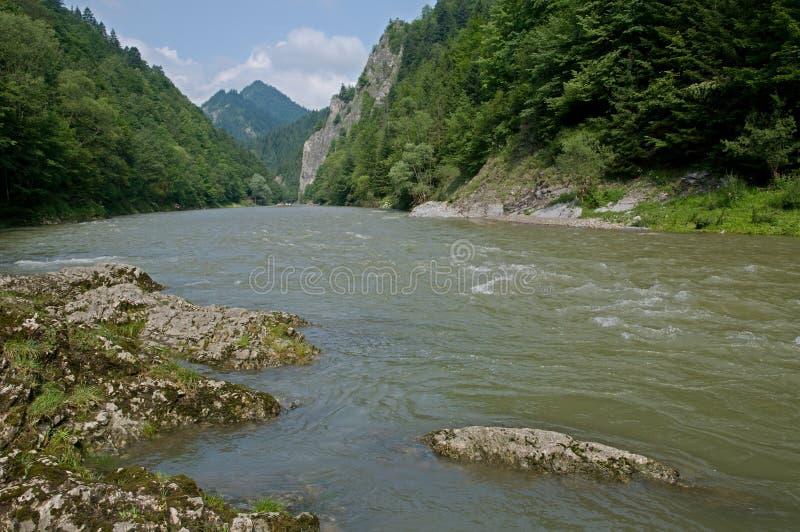 Pieniny, Slovakia. Canyon river Dunajec in National Park Pieniny, northern Slovakia, Europe royalty free stock photo