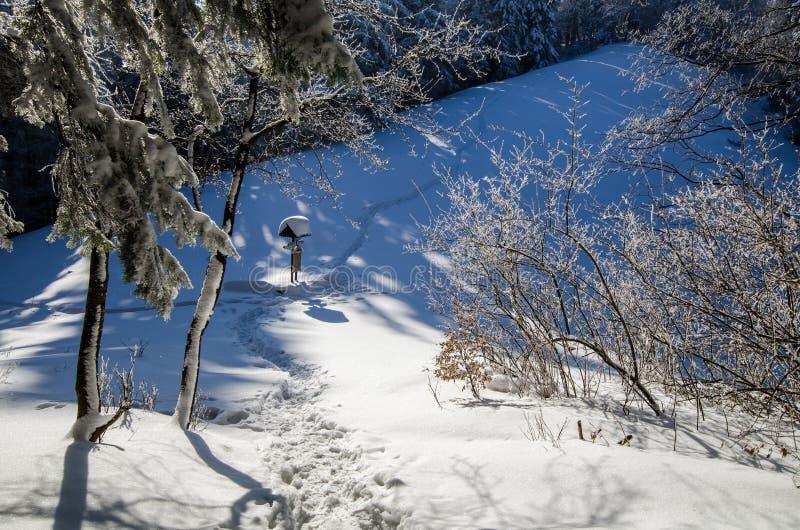 Pieniny vinterbana royaltyfria bilder