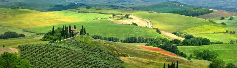 Pienza, Тоскана - июнь 2019: красивый ландшафт Тосканы в Италии, бельведере Podere в Val d Orcia около Pienza с кипарисом стоковое изображение