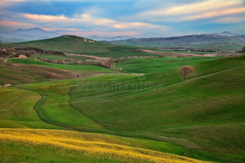 Pienza Siena, Tuscany, Italien: vårlandskap av den Val D 'Orcia bygden arkivbild