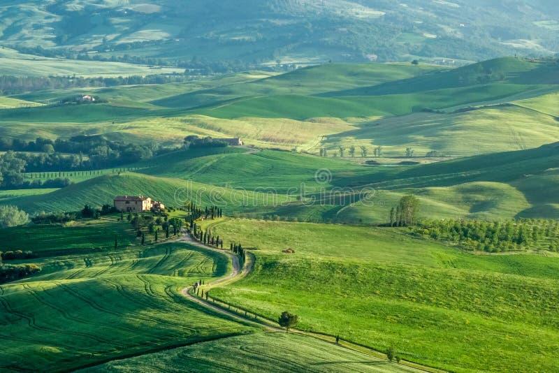 PIENZA, TUSCANY/ITALY - 16 DE MAYO: Campo del d'Orcia de Val cerca imagen de archivo libre de regalías