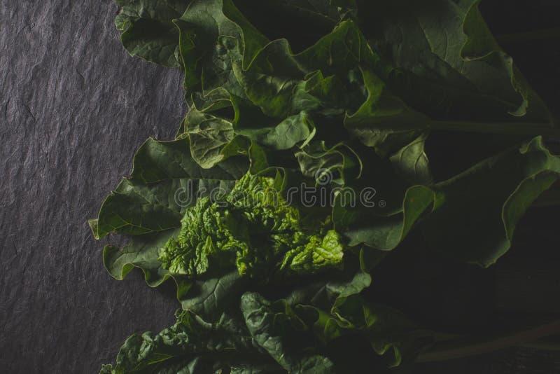 Pieplant organico che si trova sulla pietra scura immagini stock libere da diritti