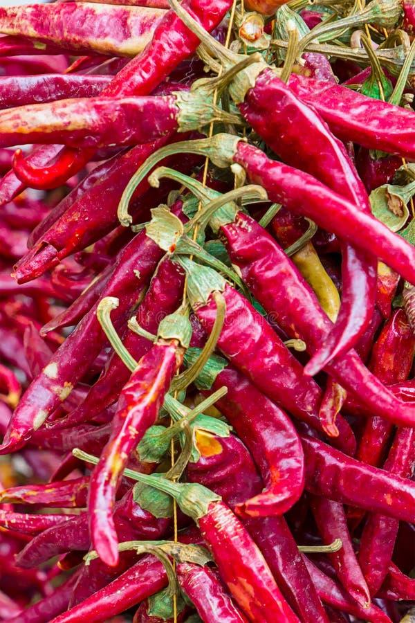 Pieprze połuszczą czerwień wiele owoc suszyli całego owoc zbliżenia tła kucharstwa jaskrawą kolorową bazę zdjęcia royalty free