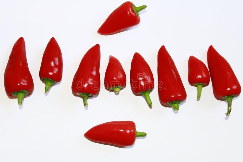 pieprzone czerwone obrazy stock