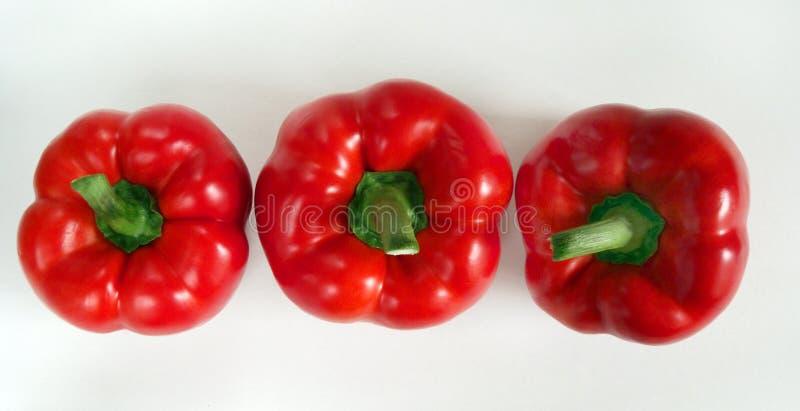 pieprzone czerwone zdjęcia stock