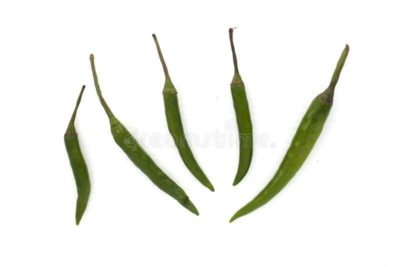 Pieprzowy zielony Capsicum royalty ilustracja