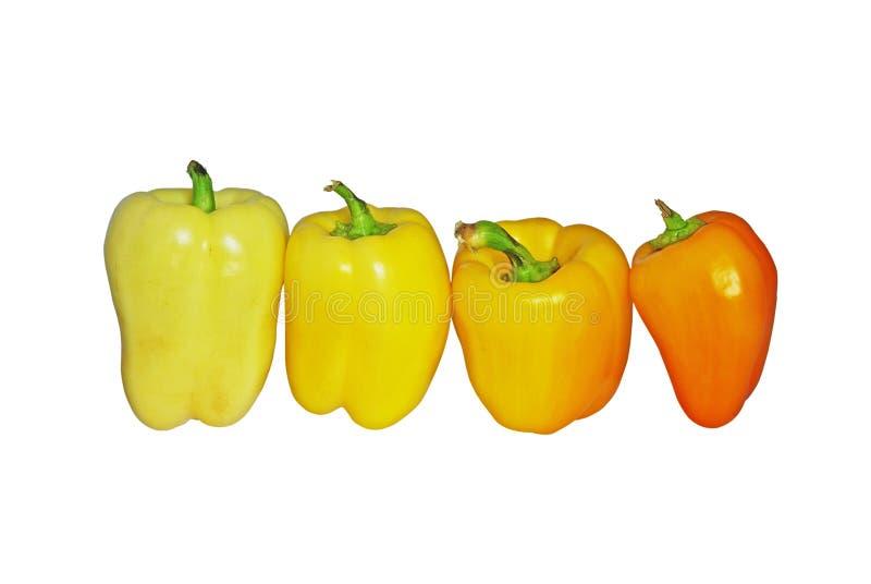 pieprzu kolor żółty ilustracji