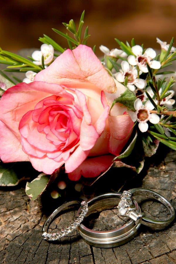 pierścień różę srebra obrazy stock