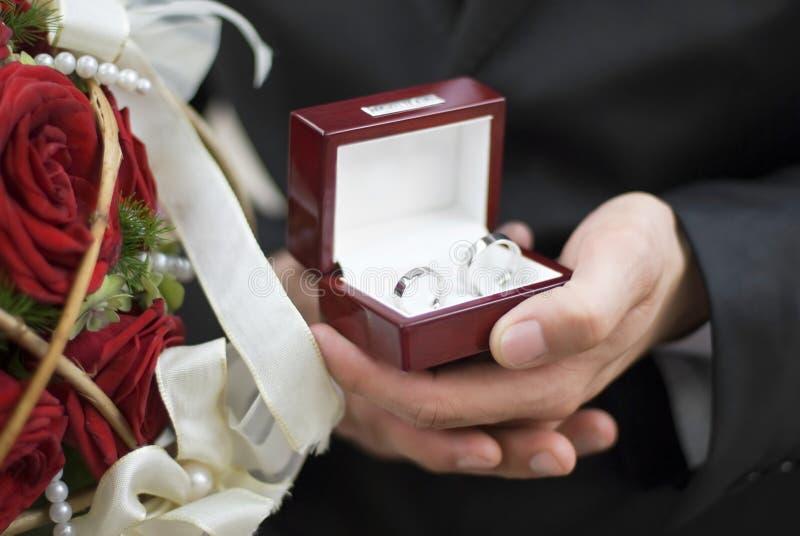 pierścienie zdjęcie stock