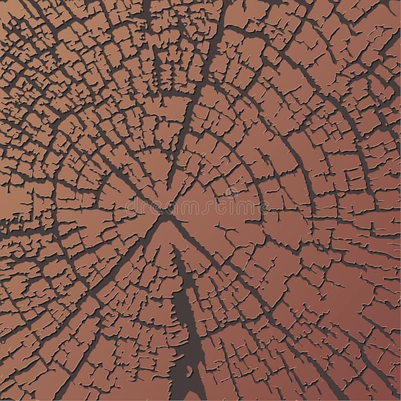 pierścienie tekstury rocznych drewna ilustracji