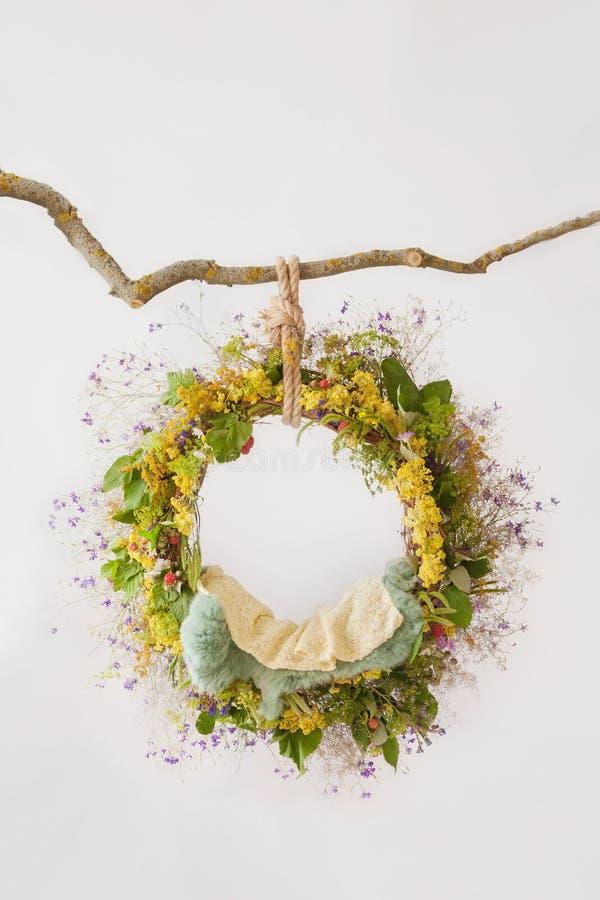 Pierścionek z wildflowers i ampuły zielenią opuszcza obwieszenie na gałąź, wzór dla sesja zdjęciowa. noworodkowie zdjęcia royalty free