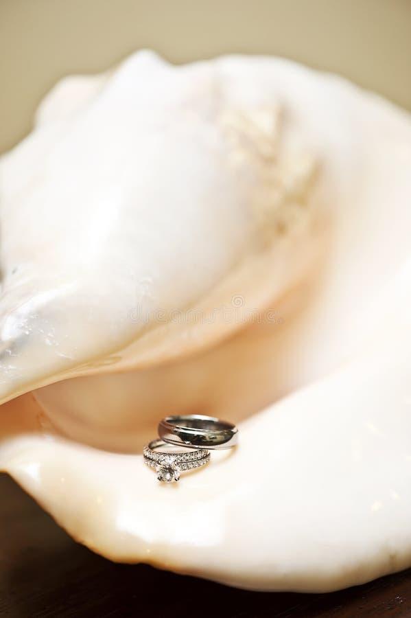 pierścionków skorupy ślub zdjęcie royalty free
