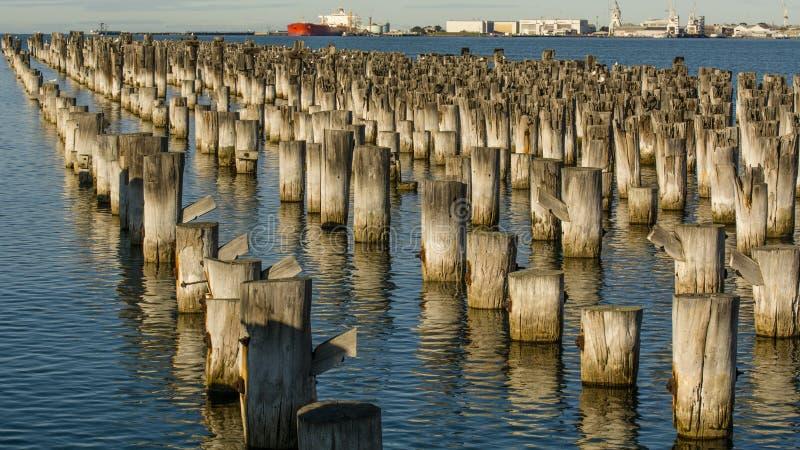 Pier,墨尔本,澳大利亚王子 库存照片