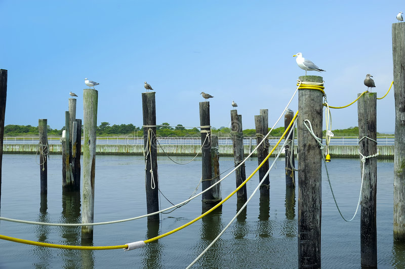 Download Pier Royalty Free Stock Photos - Image: 245478