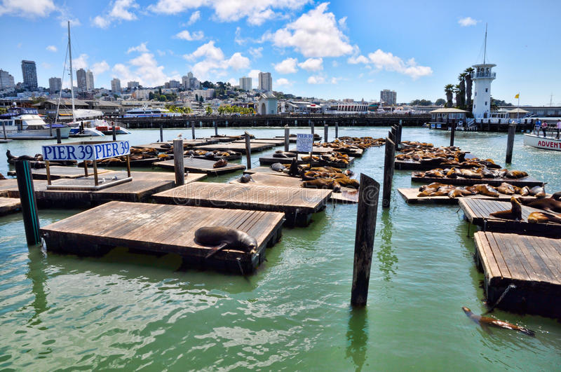 Pier 39 royalty free stock images