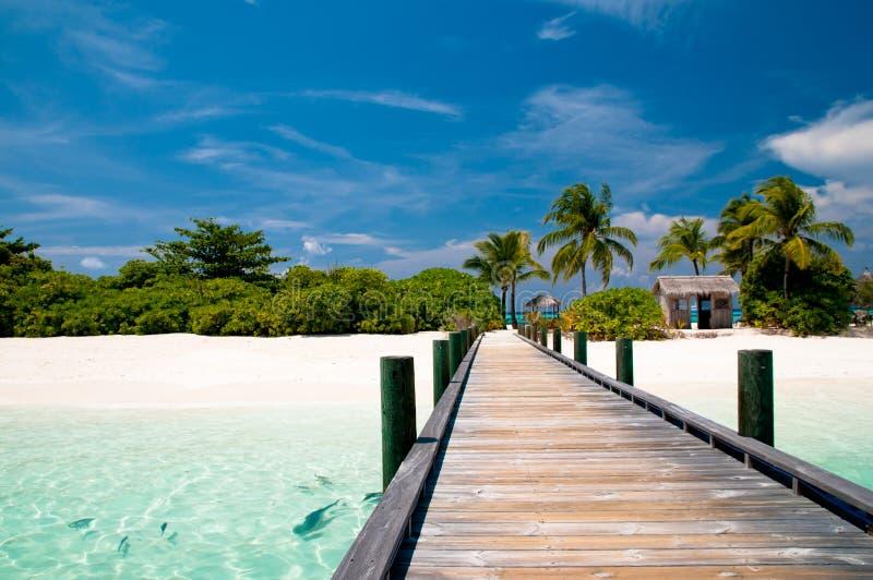 Pier aan een tropisch strand stock afbeeldingen