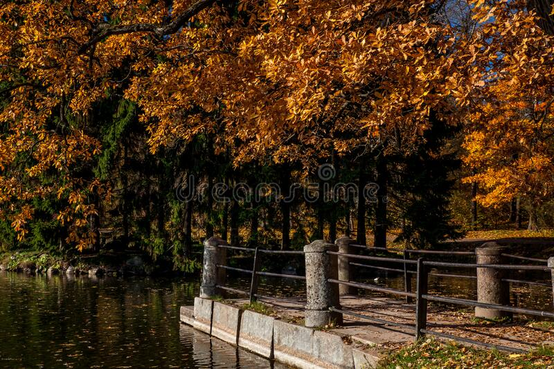 Pier in the autumn park. Empty royalty free stock photo