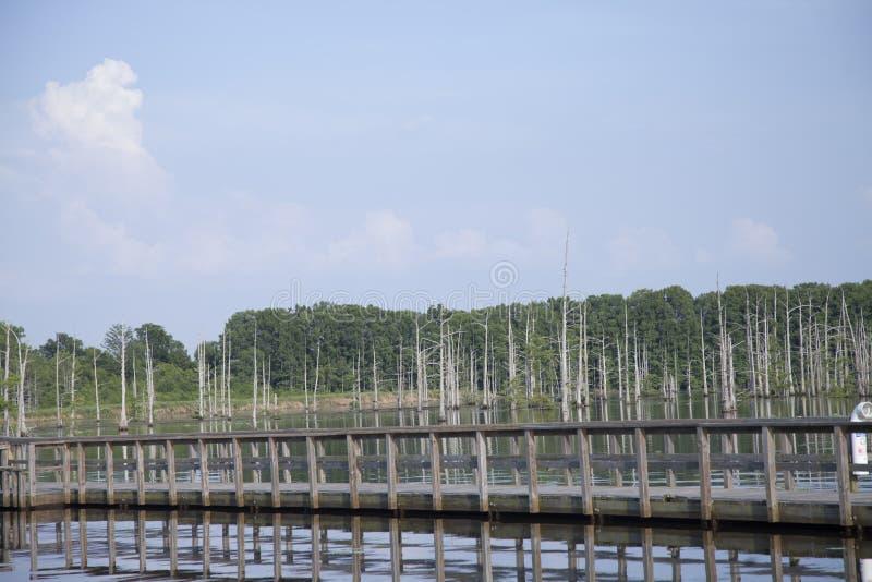 Pier im Freien stockbilder