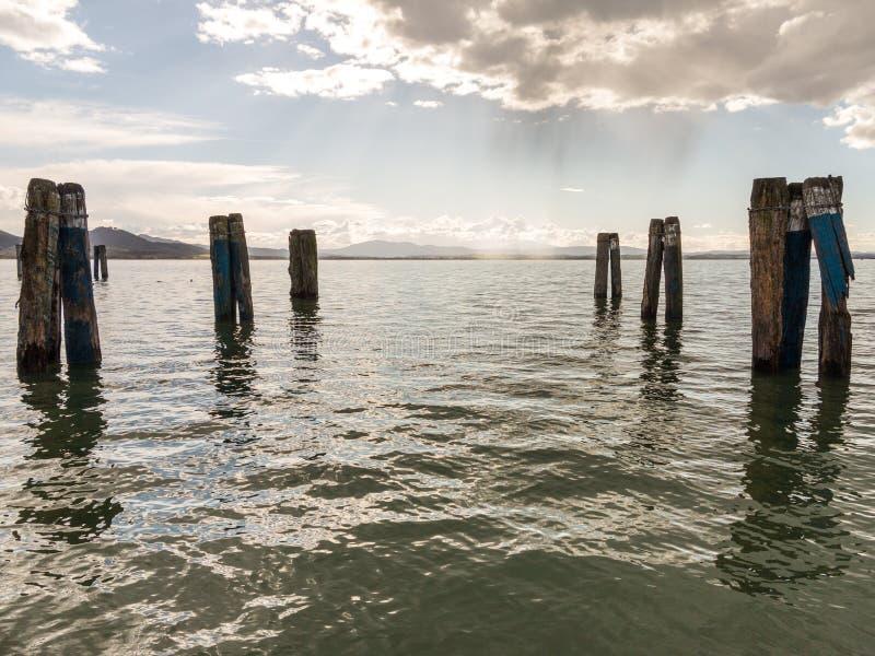 Pier Legs i vattnet royaltyfri bild