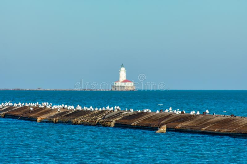 Pier with Seagulls on Lake Michigan in Chicago with a Lighthouse far off in the distance royalty free stock images