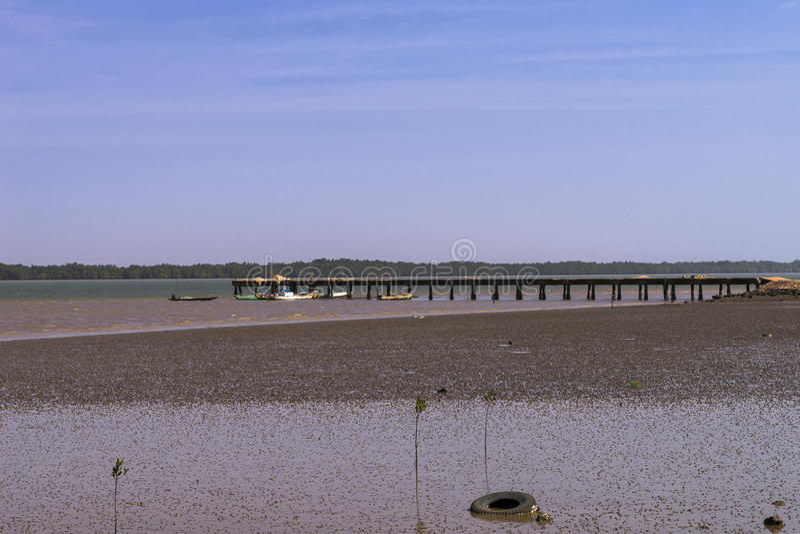 Pier op de rivier van Gambia royalty-vrije stock foto's