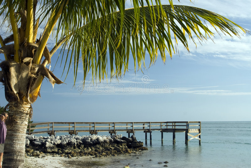 Pier over atlantic ocean florida keys stock photos