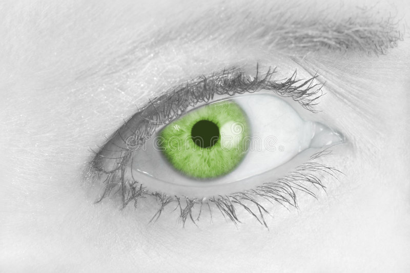Download Piercing Green Eye stock photo. Image of isolated, glamorous - 2440602