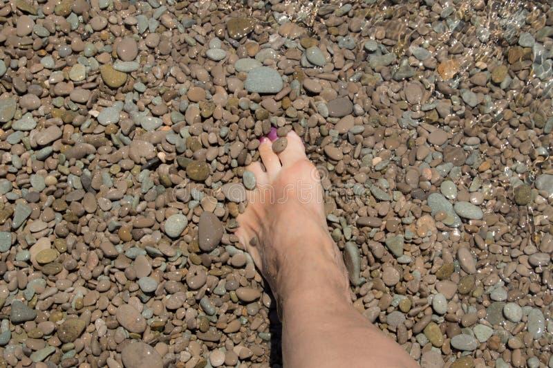 Pierna bronceada de una mujer en un Pebble Beach contra el mar y las ondas imagenes de archivo