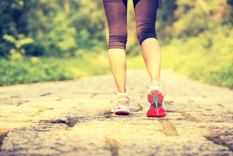Piernas de la mujer de la aptitud que caminan en rastro del bosque imagen de archivo