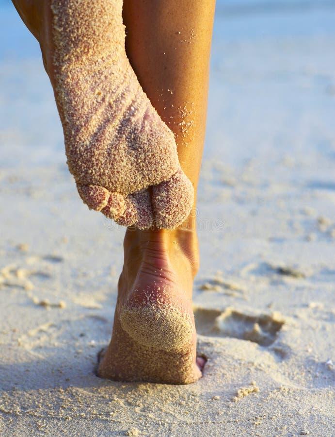 Piernas de las mujeres en una playa imagen de archivo libre de regalías