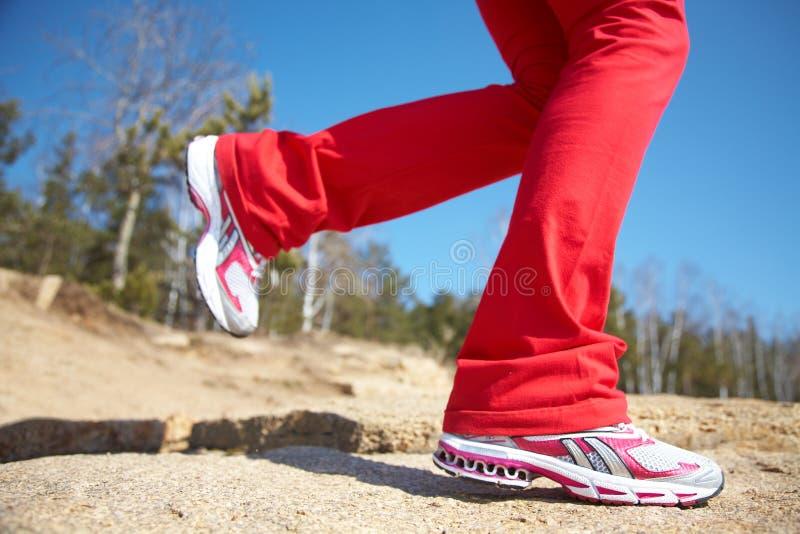 Piernas de una muchacha en zapatillas de deporte foto de archivo