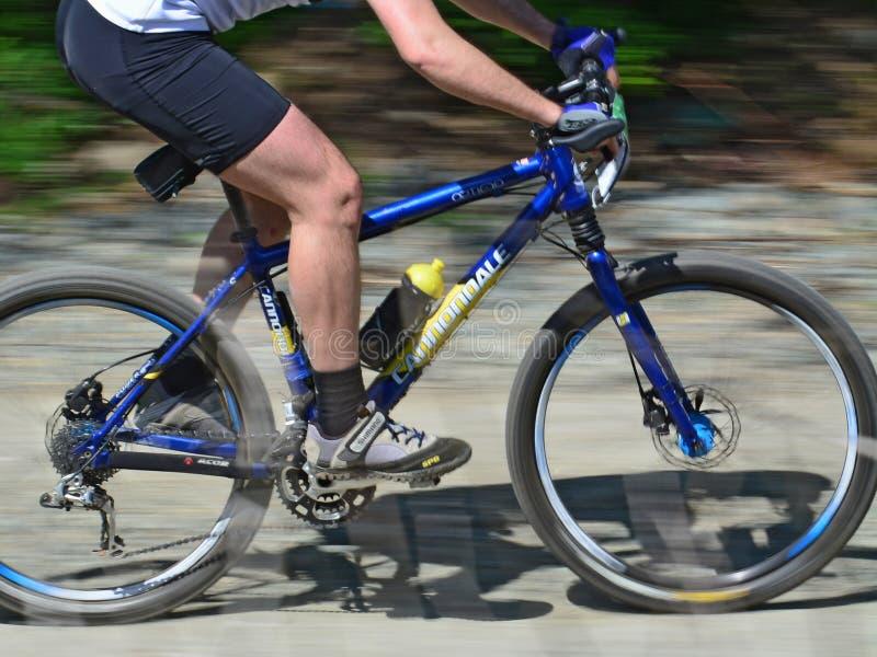 Piernas del ciclista en la bici de montaña - falta de definición de movimiento imagen de archivo libre de regalías