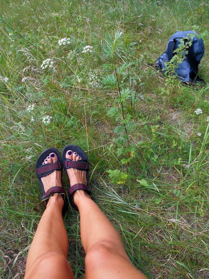 Piernas femeninas en el viaje verde del bosque fotos de archivo libres de regalías