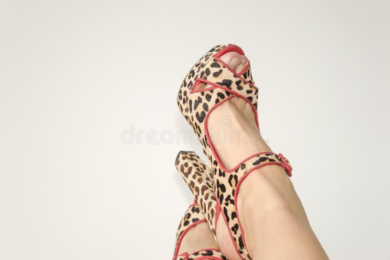 Piernas femeninas en sandalias con un estampado de animales imagen de archivo