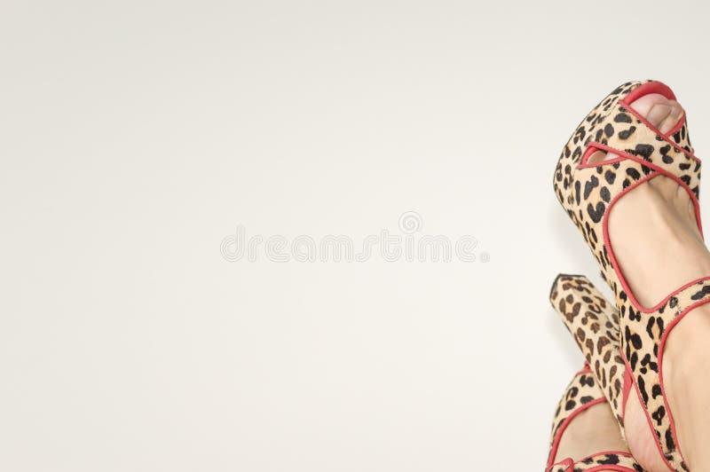 Piernas femeninas en sandalias con un estampado de animales fotografía de archivo libre de regalías