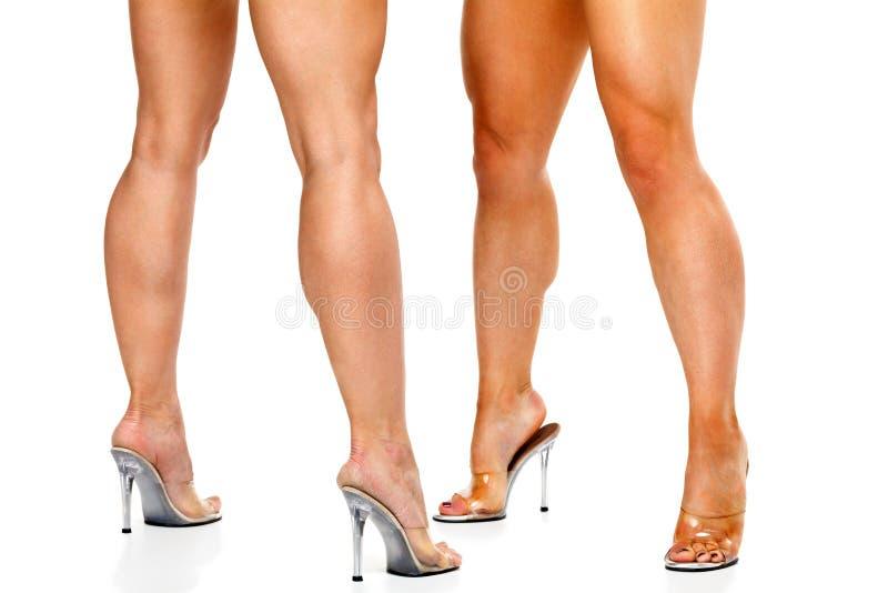 Piernas femeninas musculares bronceadas aisladas en blanco imagen de archivo