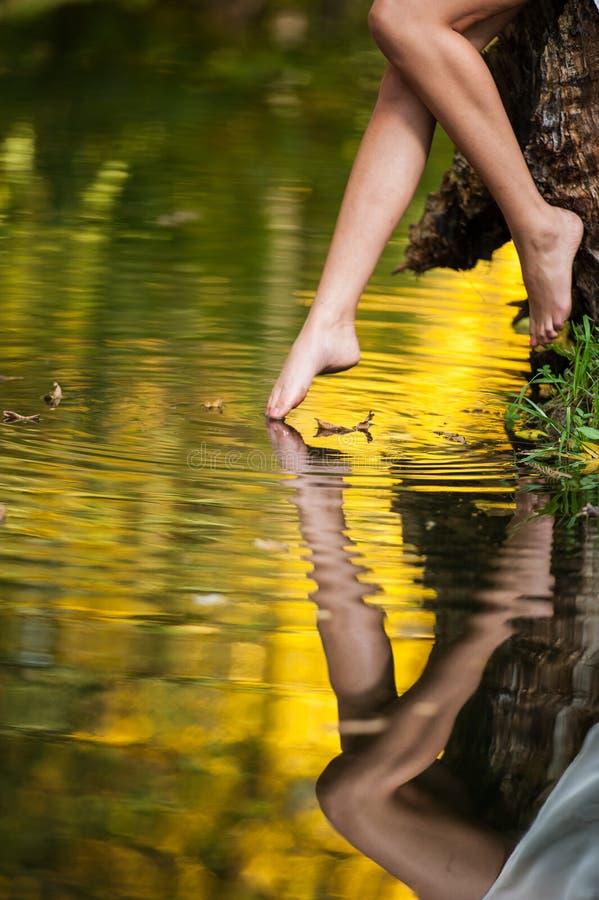 Piernas hermosas de la mujer en agua en el bosque. cuento de hadas imagen de archivo