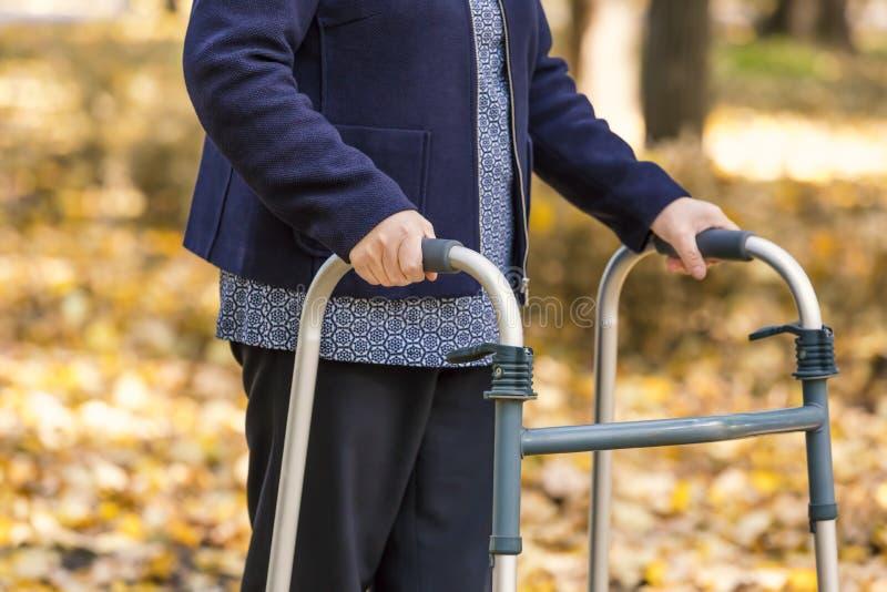 Piernas mayores de la mujer que caminan con el caminante en parque del otoño imagen de archivo