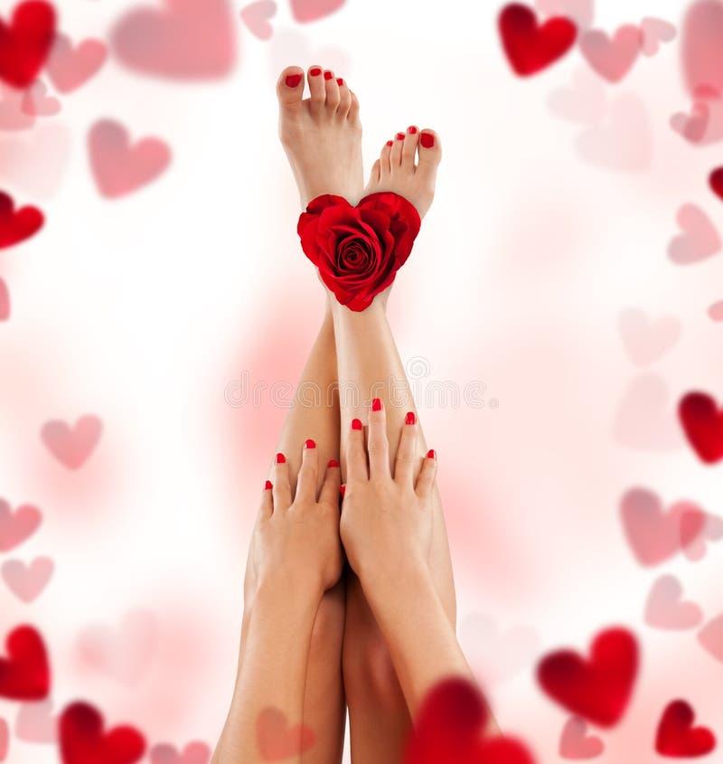 Piernas y manos femeninas con color de rosa y los corazones fotografía de archivo