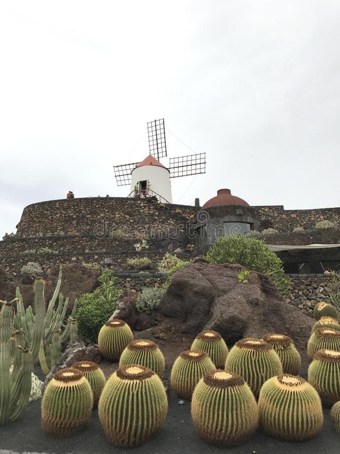 Pierre de ciel de jaune de vert de moulin à vent de cactus photographie stock