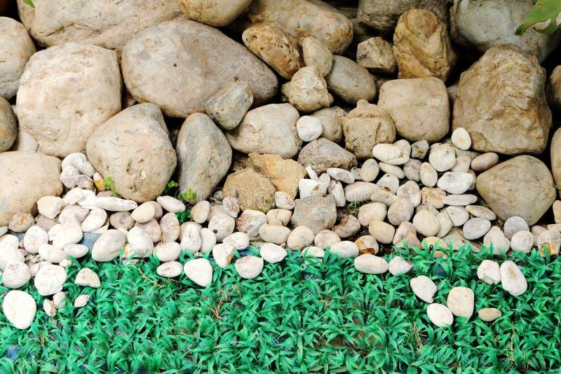 pierre et gazon dans le jardin photo stock