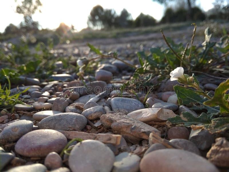 Pierre naturelle de paysage de Paisaje photographie stock