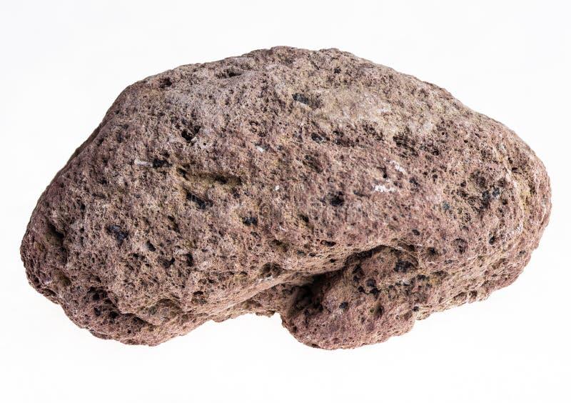 pierre ponce brune sur le fond blanc photographie stock