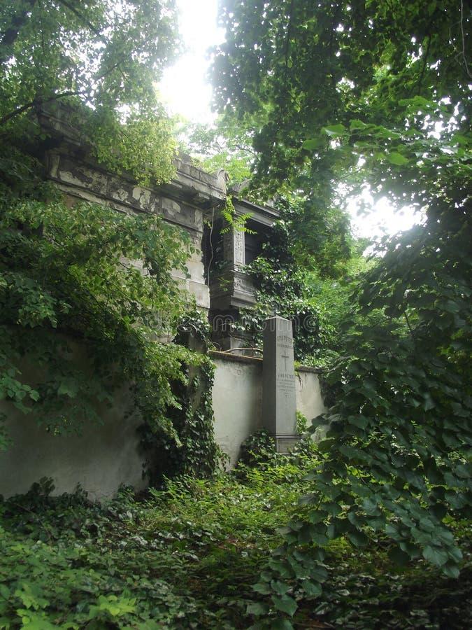 Pierre tombale de famille de vintage dans le cimetière de Budapest, Hongrie photographie stock