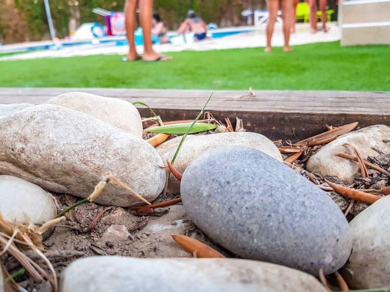 Pierres arrondies de jardin dans les enfants de premier plan et de -de-foyer jouant ? l'arri?re-plan de piscine photographie stock libre de droits