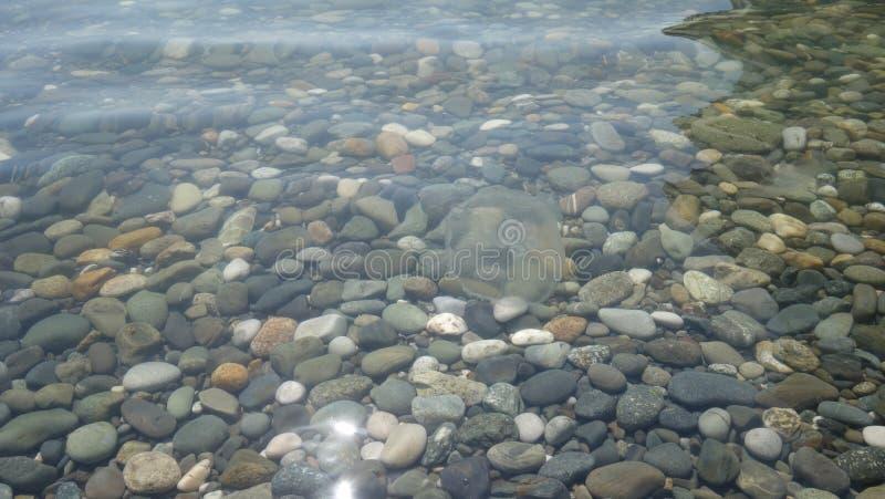 Pierres de mer sous l'eau méduses photographie stock
