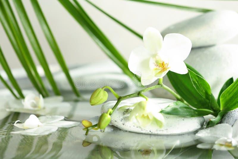 Pierres de station thermale, orchidée et feuilles de bambou dans l'eau photographie stock