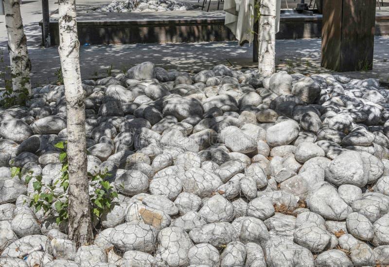 Pierres entourant des arbres images libres de droits